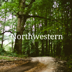 Northwestern Wordpress Theme - Logo